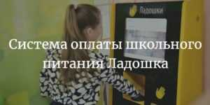 Личный кабинет в Ладошки дети: регистрация, как войти и пополнить счет